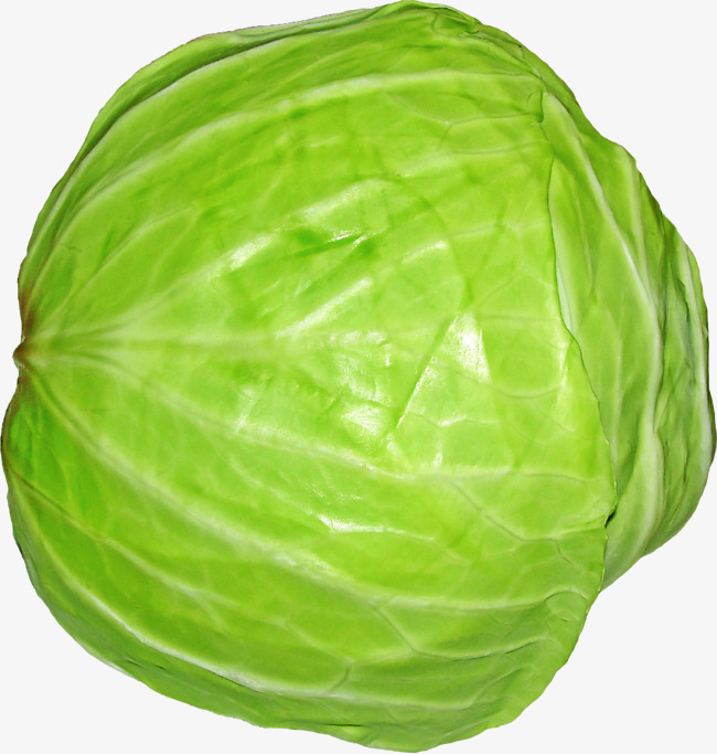 Png vegetables image and. Cabbage clipart green cabbage