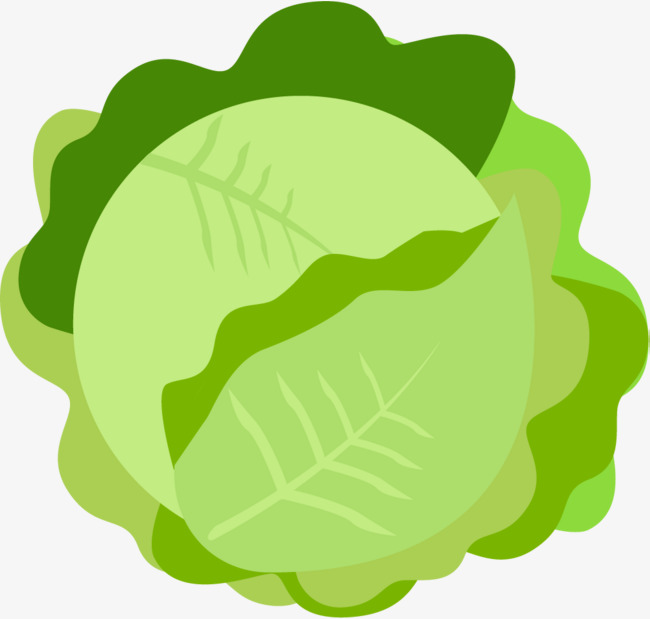 Cabbage clipart green food. Material fruits and vegetables