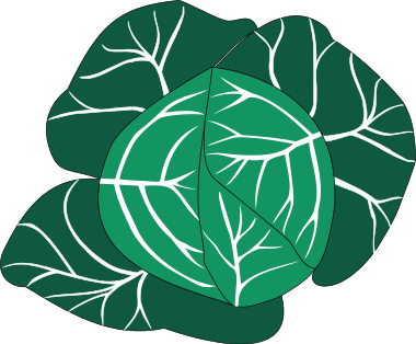 Vegetables png html. Cabbage clipart green food