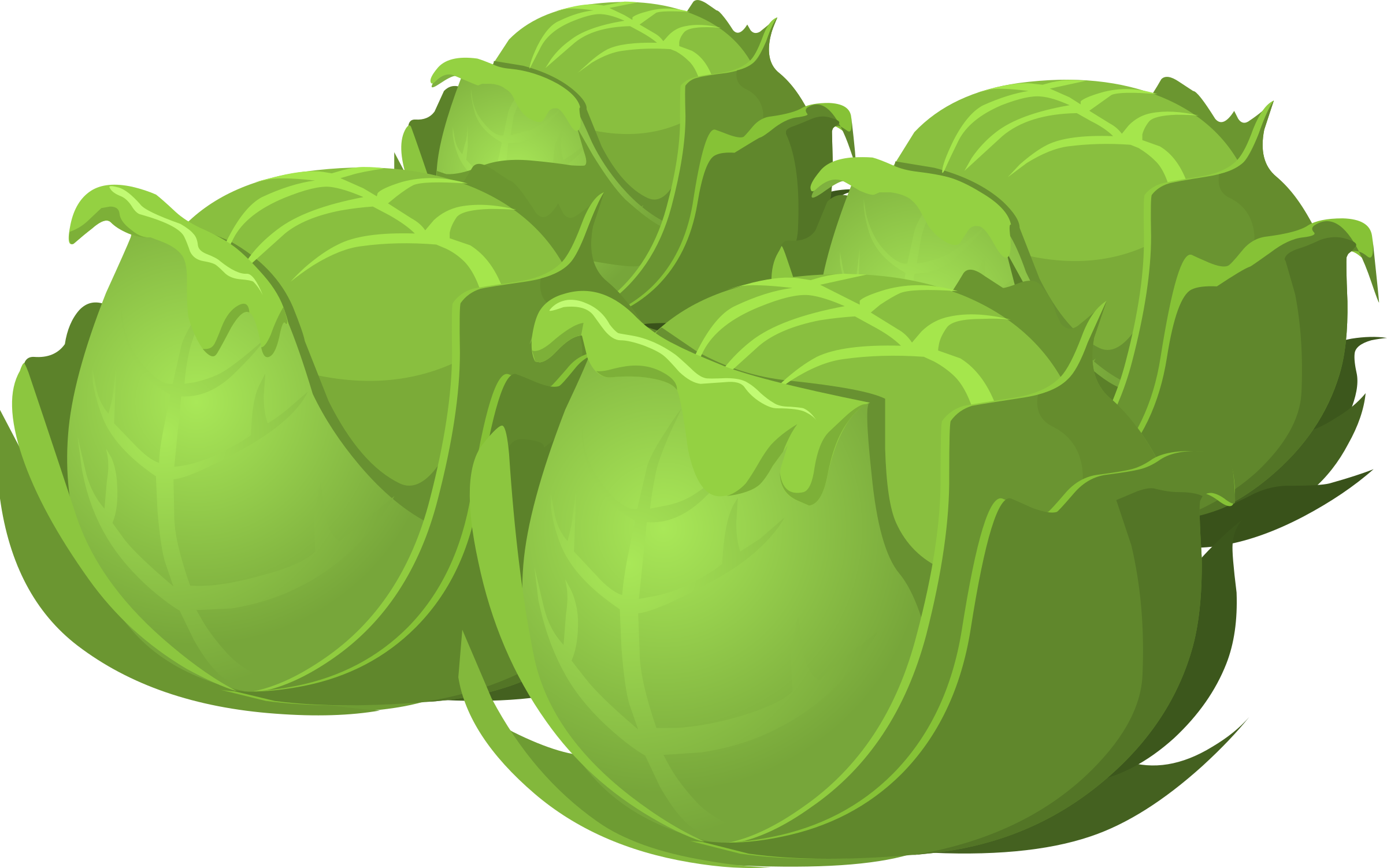Icons png free and. Cabbage clipart green food