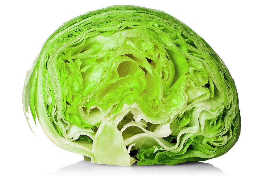 Everything you need to. Cabbage clipart head lettuce