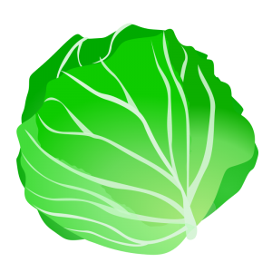 Svg clip art download. Cabbage clipart head lettuce