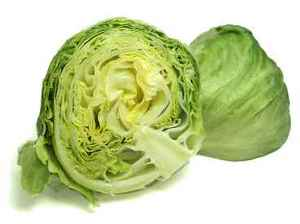 Cabbage clipart head lettuce. How to grow leafy