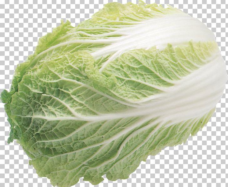 Salad produce png arugula. Cabbage clipart iceberg lettuce