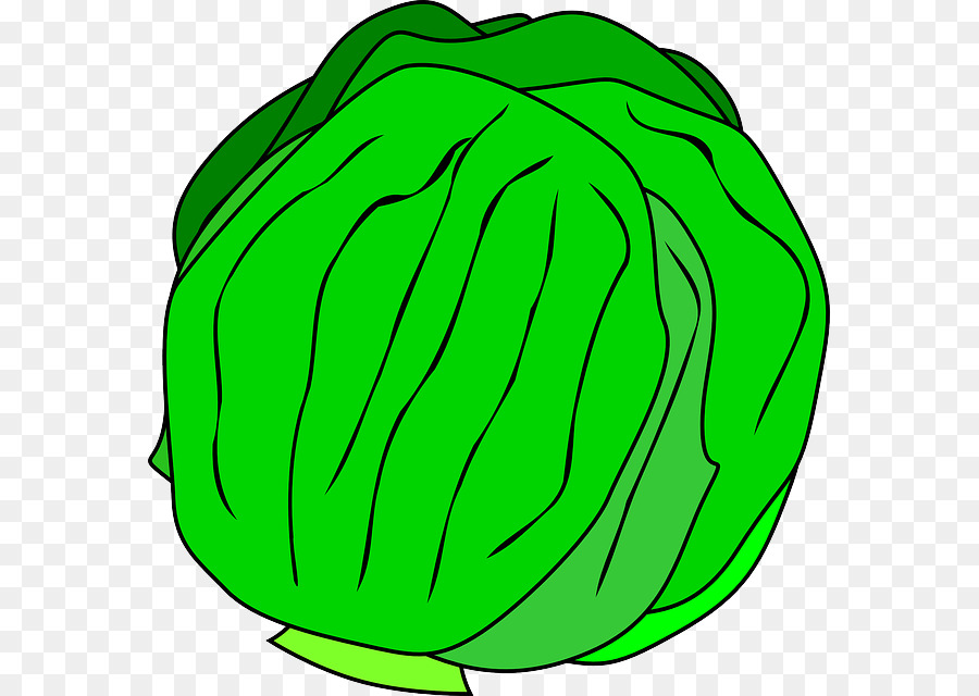 Hamburger cheeseburger salad clip. Cabbage clipart iceberg lettuce