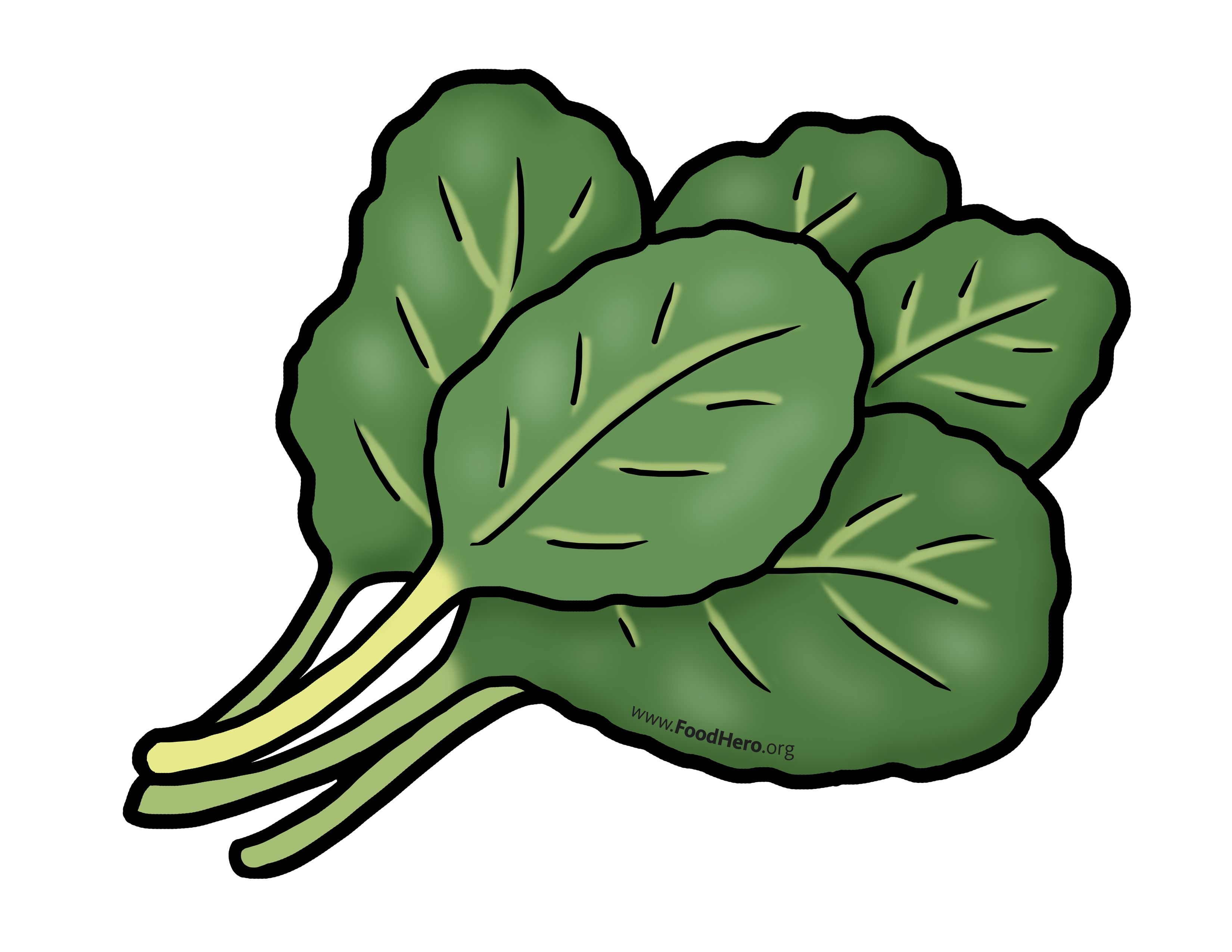 Clipart vegetables green vegetable. Chollard greens illustration foodhero