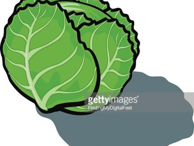 Cabbage clipart lettuce leaf. X free clip art