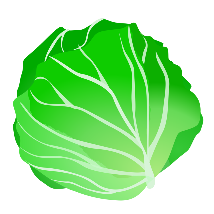 Plant leaf food png. Cabbage clipart lettuce leave