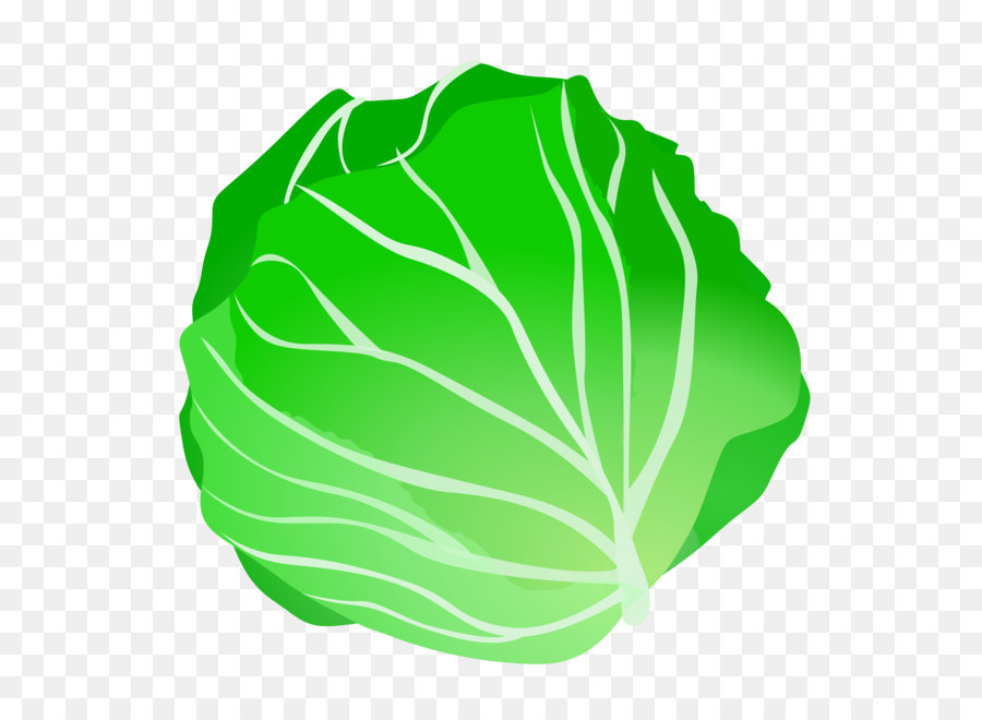 Vegetable fruit clip art. Cabbage clipart lettuce leave