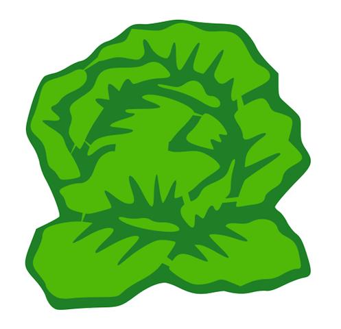 . Cabbage clipart lettuce slice