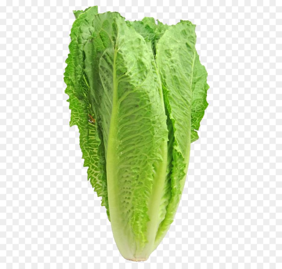Cabbage clipart lettuce slice. Caesar salad iceberg romaine