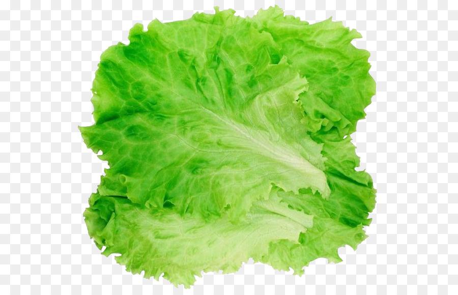 Cabbage clipart lettuce slice. Romaine hamburger salad clip
