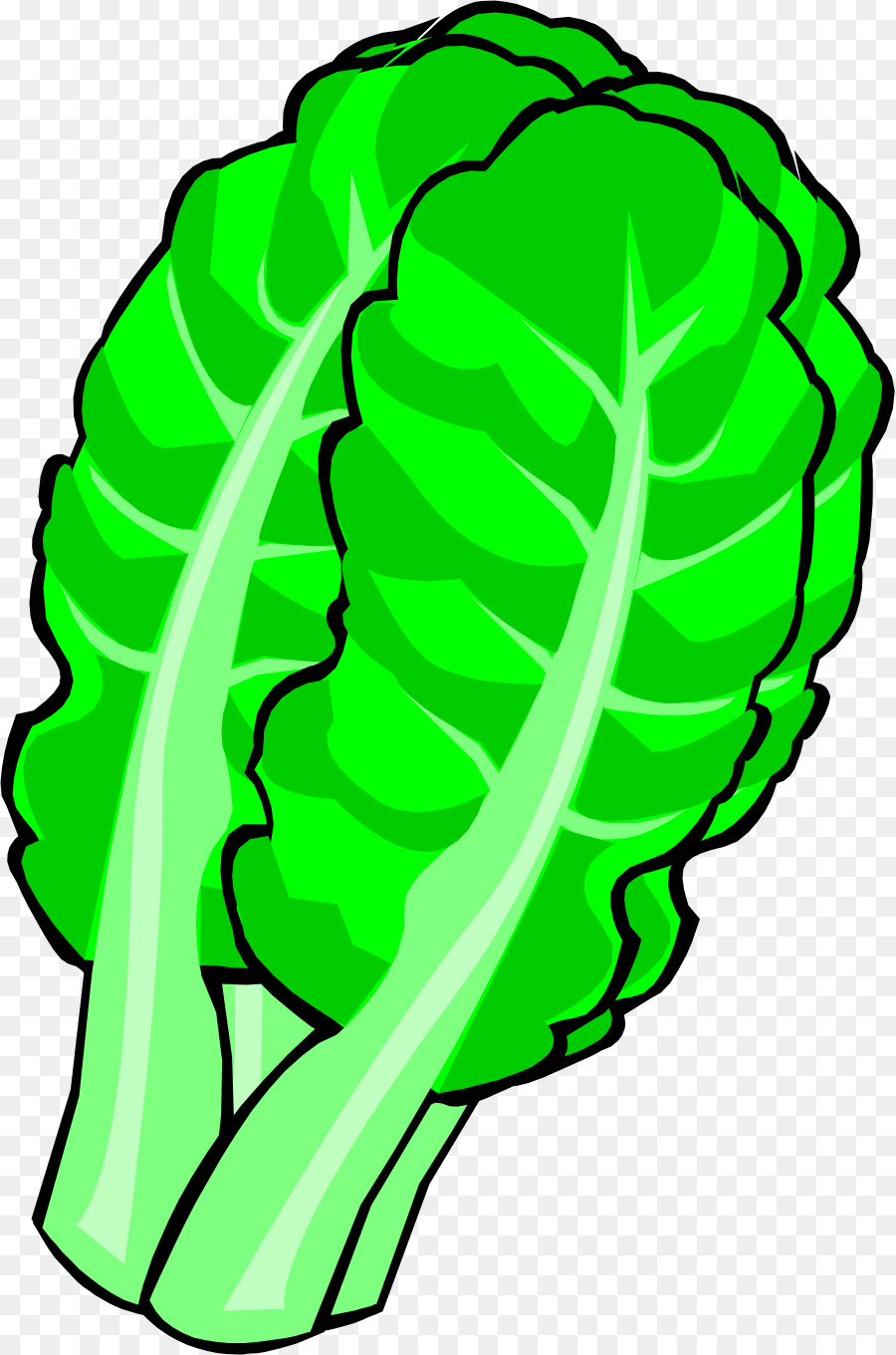 Cabbage clipart napa cabbage. Chinese leaf vegetable clip