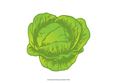 Flashcard free papercraft templates. Cabbage clipart printable