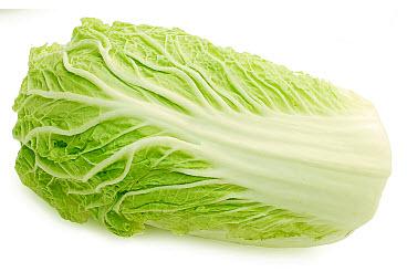 Cabbage clipart salad leave. Crusade belly bytes leaf