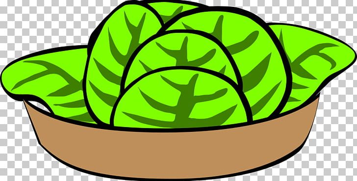 Caesar greek chicken png. Cabbage clipart salad leave