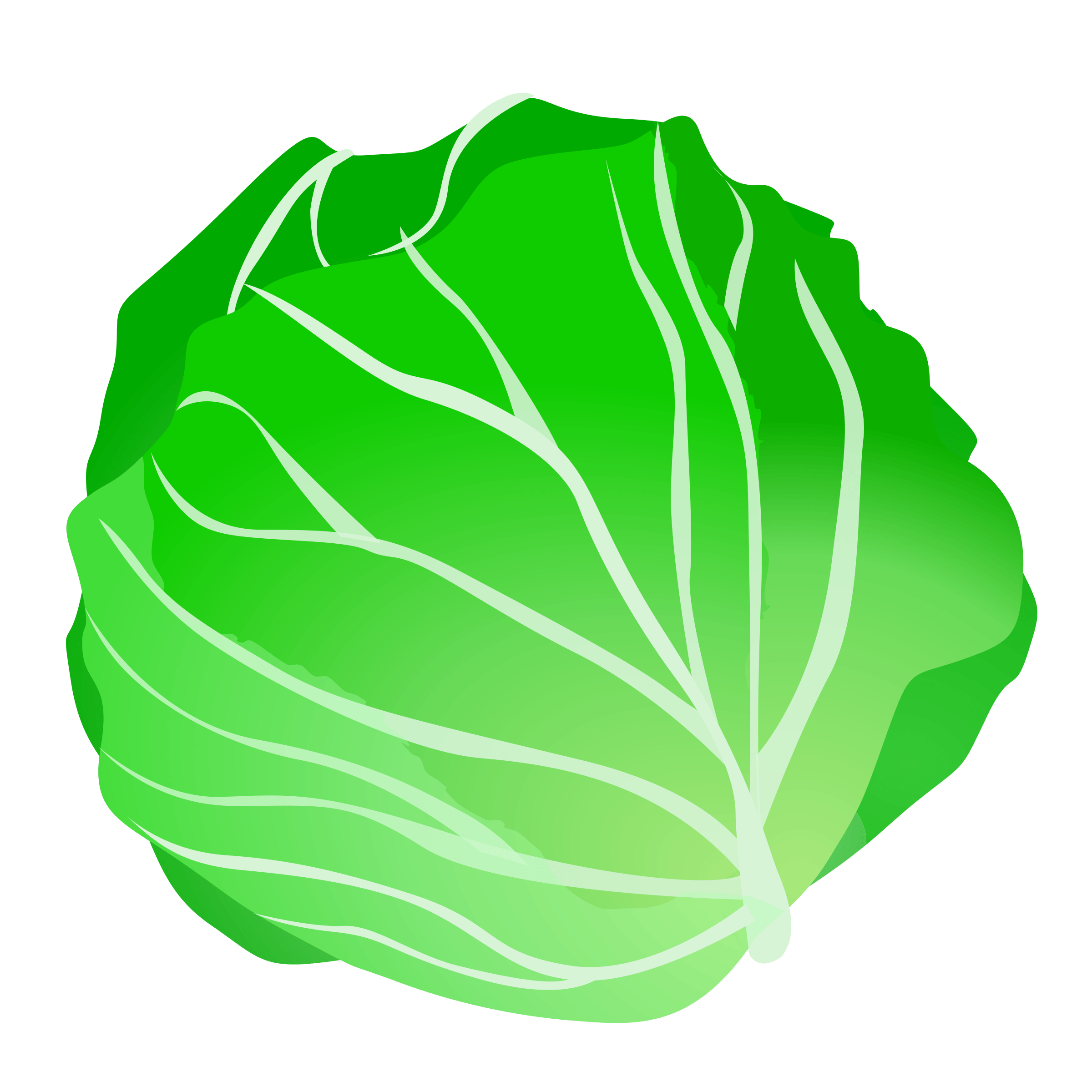 Cabbage clipart sawi. Cliparts zone