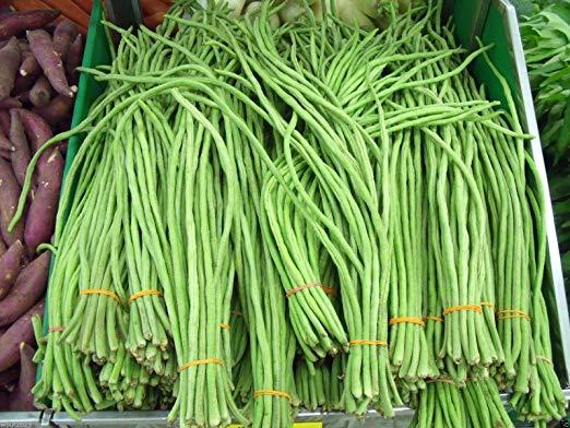 Amazon com yardlong bean. Cabbage clipart sitaw