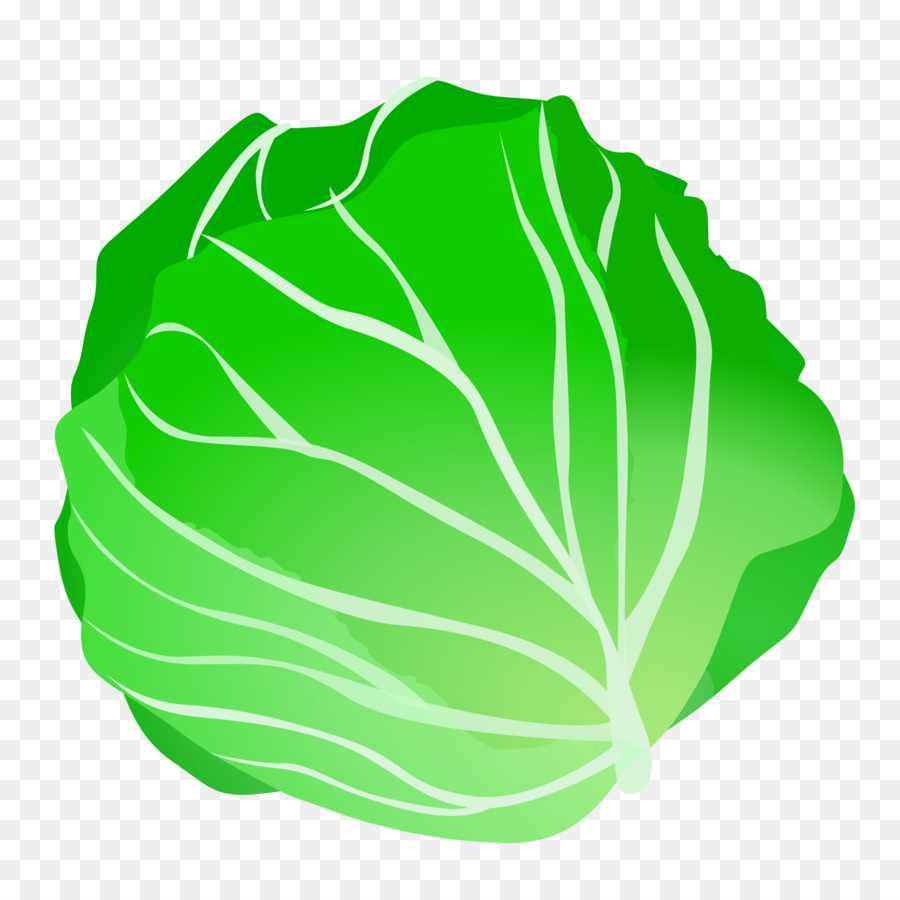 Green leaf food . Cabbage clipart transparent background