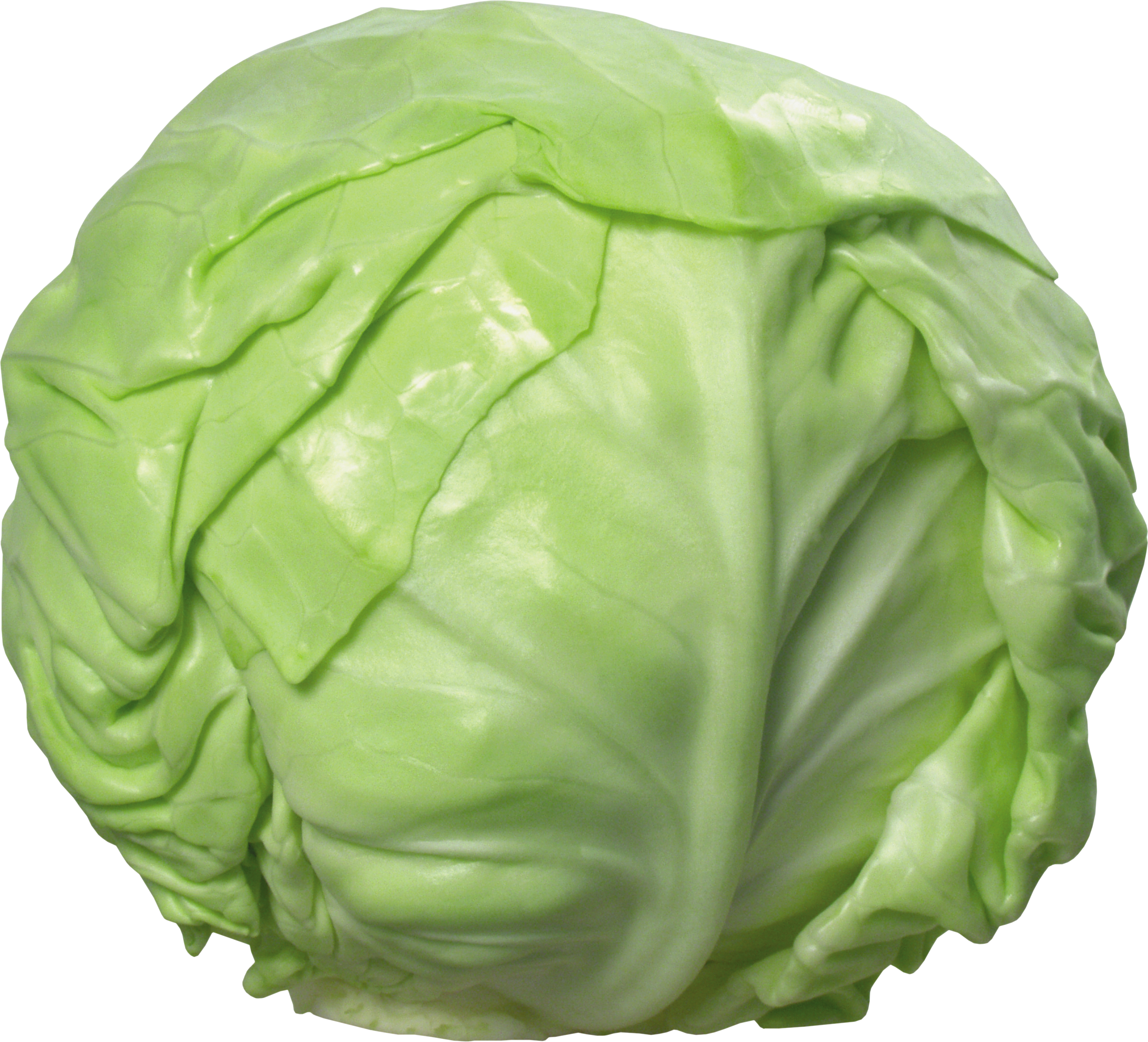 Png image . Clipart vegetables cabbage