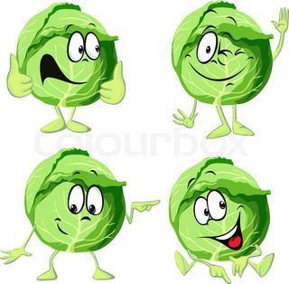 Cartoon . Cabbage clipart vector