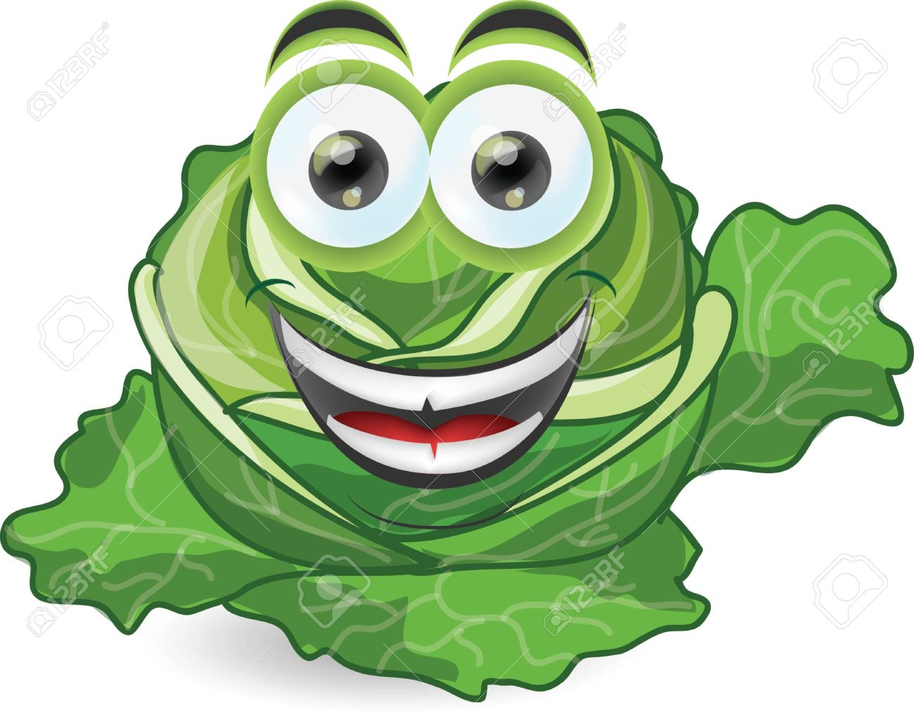 Cartoon free collection download. Cabbage clipart vector