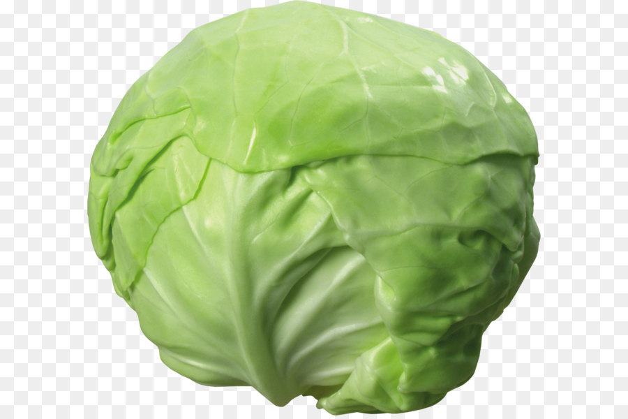 Cabbage clipart vegetable. Soup diet weight loss