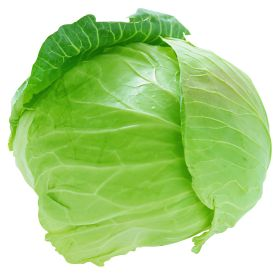 best fruit and. Cabbage clipart vegetable
