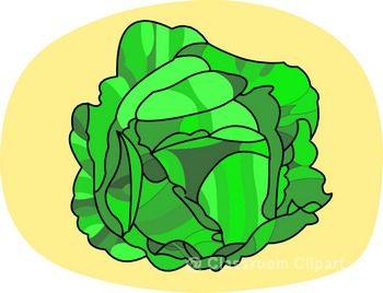 Vegetables . Cabbage clipart vegetable
