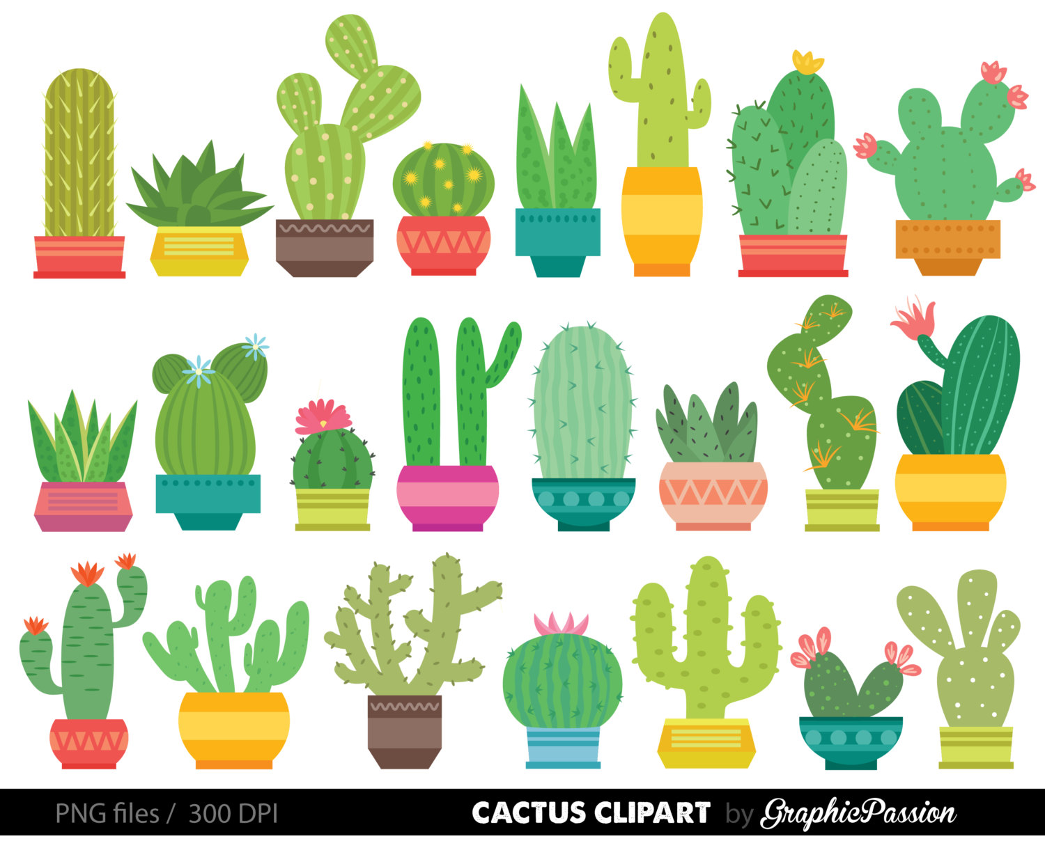 Graphics home . Cactus clipart