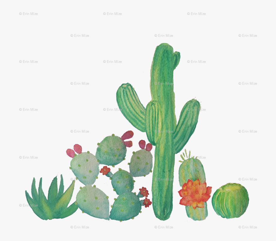 Cactus clipart banner. Freeuse download watercolor