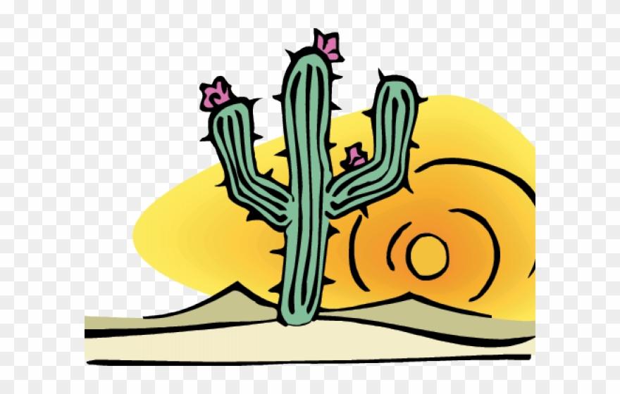 Cactus clipart desert. Png download