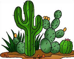 Cactus and panda free. Desert clipart