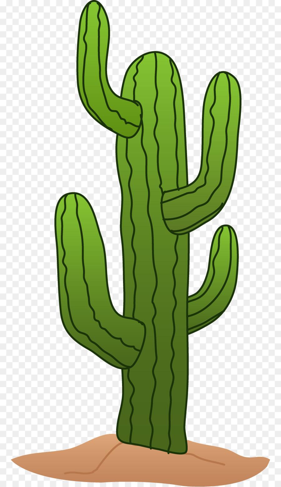 Cactus clipart desert. Cactaceae saguaro clip art