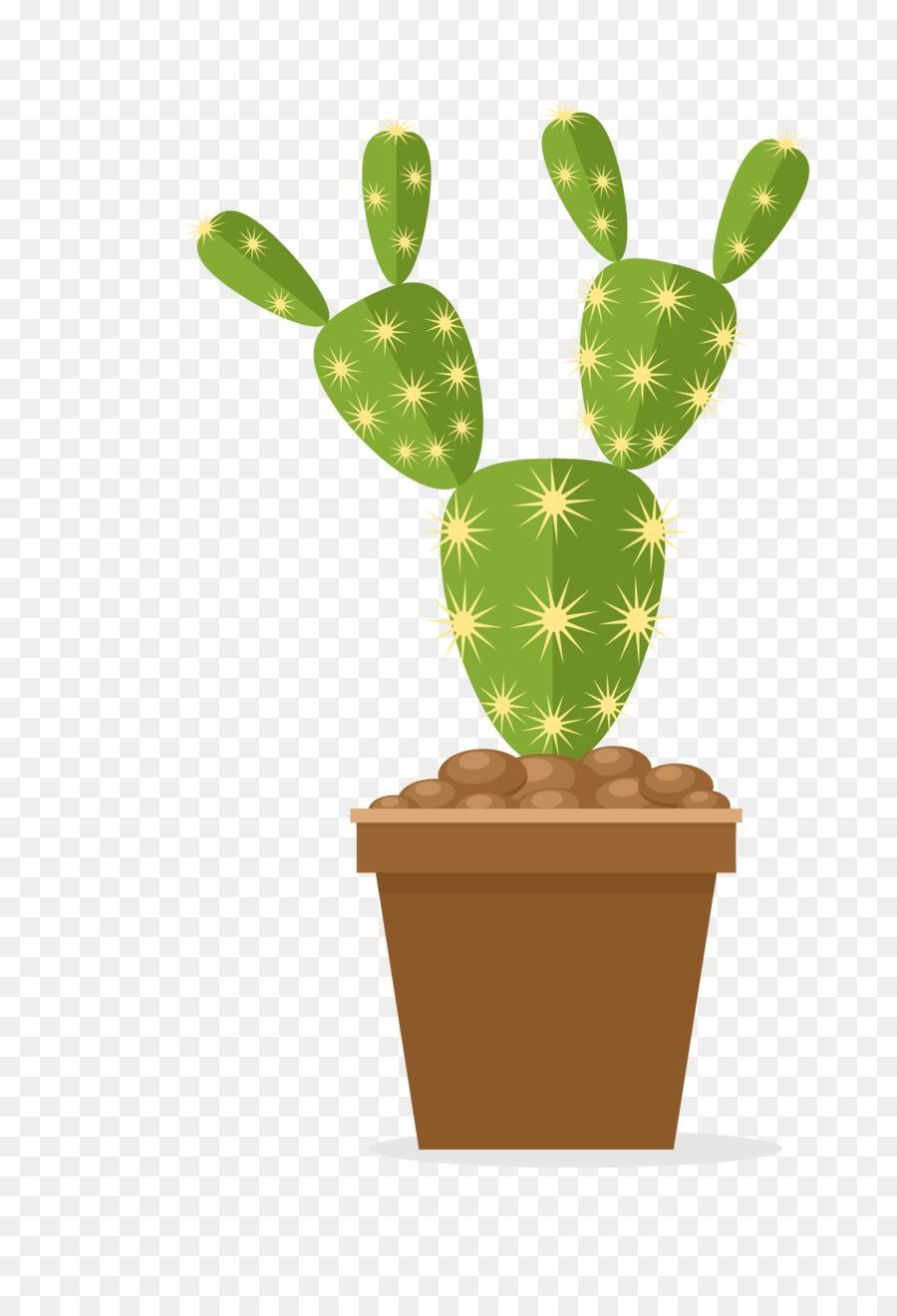 Cactus clipart nopal. Prickly pear cactaceae flowerpot