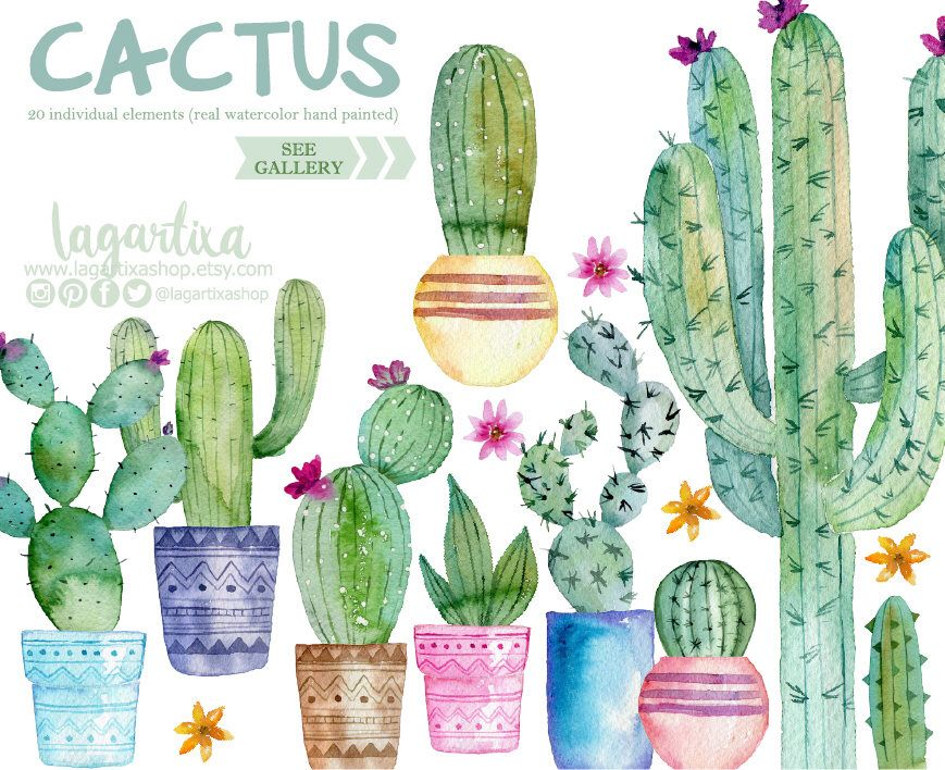 Mexican watercolor seamless pattern. Cactus clipart nopal