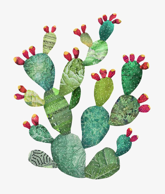 Cactus clipart nopal. Watercolor illustrator material desert