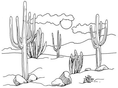Desert clipart outline. How to draw cacti
