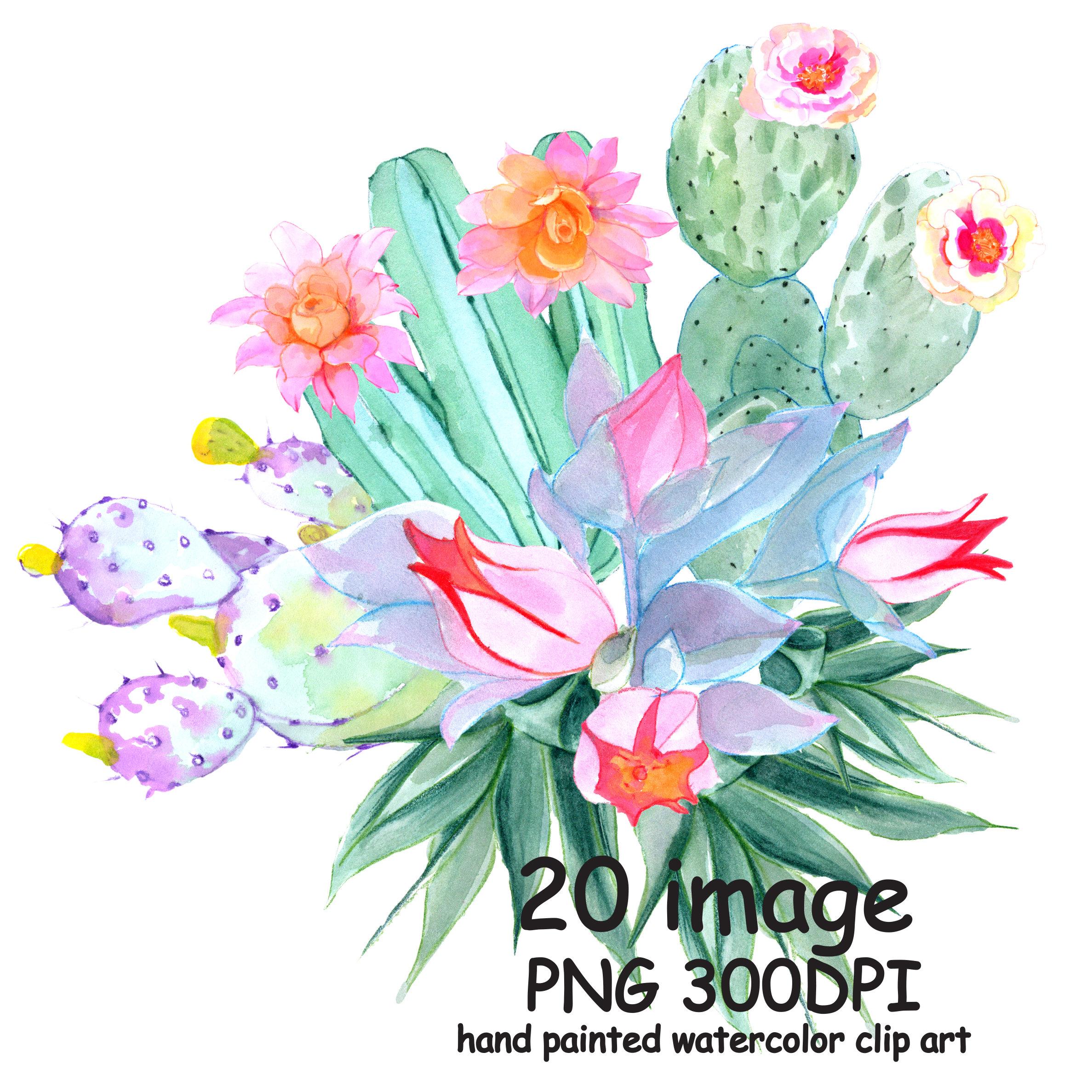 Cactus clipart summer. Sale watercolor flowers tropical