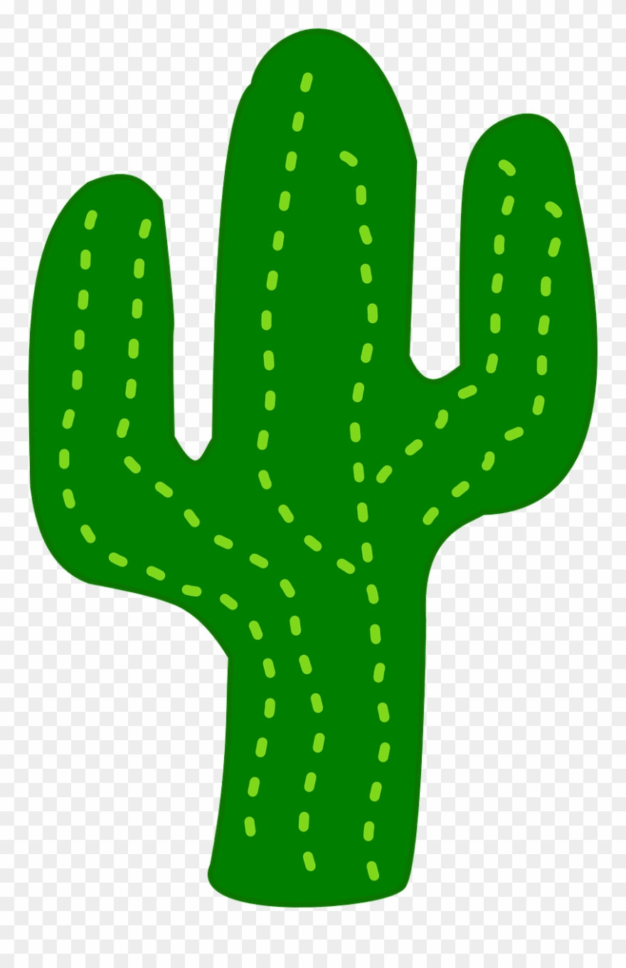 Cactus clipart vector. Free clip art at