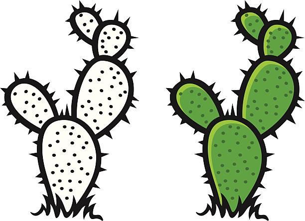 Cactus clipart vector. Download