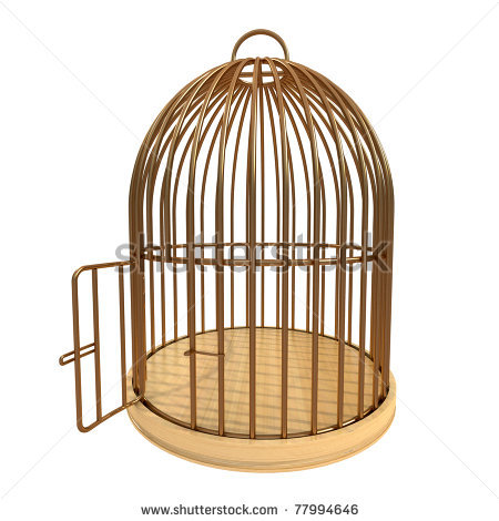 Empty . Cage clipart