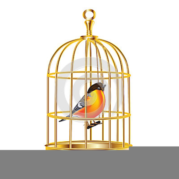 Bird free images at. Cage clipart