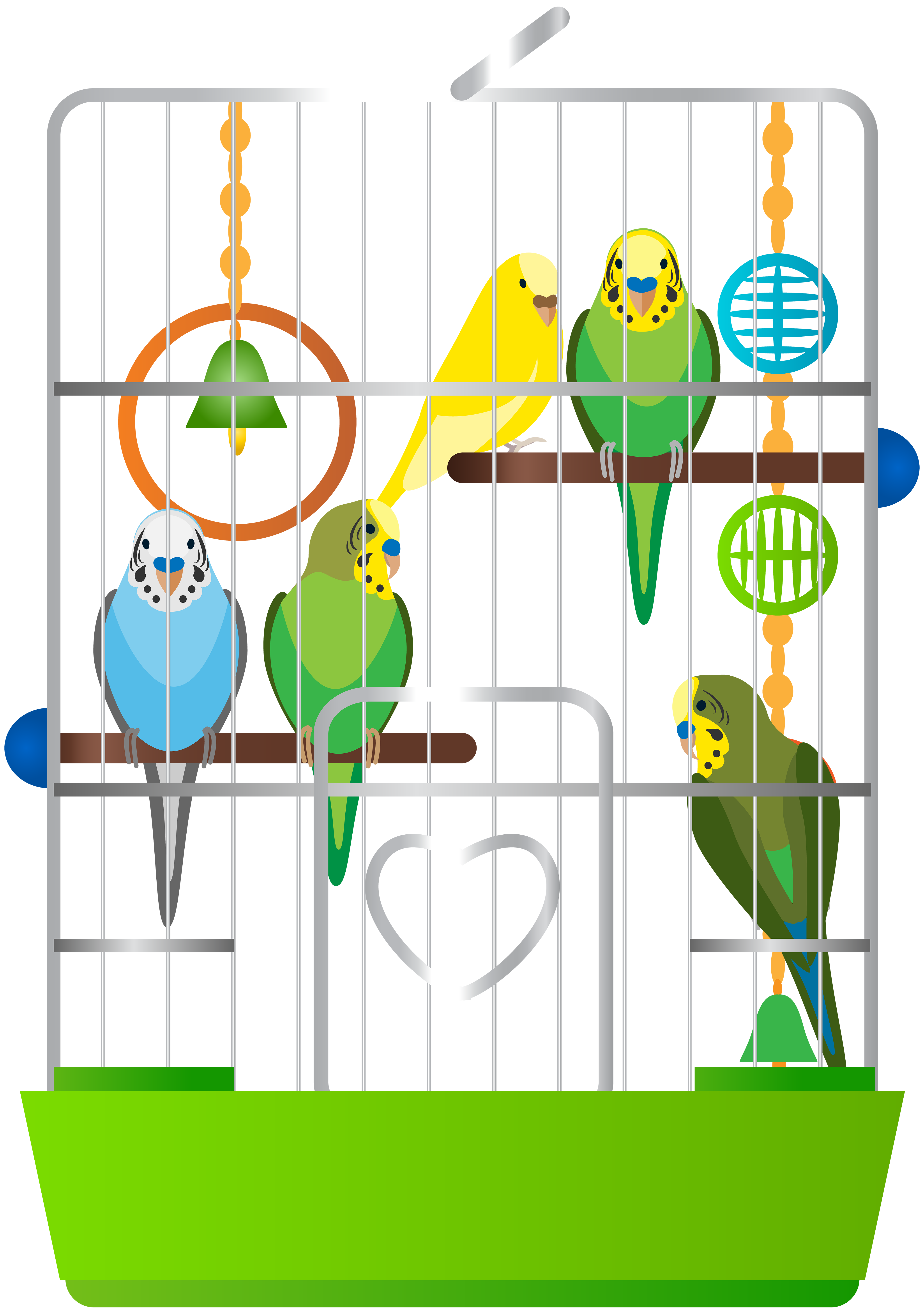 With parrots png clip. Cage clipart