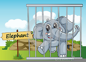 Animals in cages free. Cage clipart animal cage