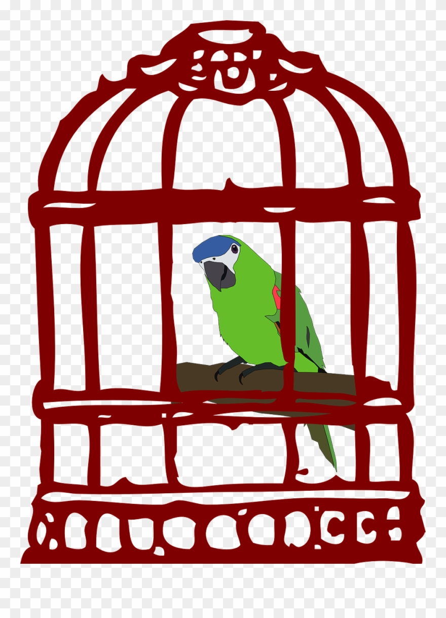 Cage clipart animal cage. Black and white stock
