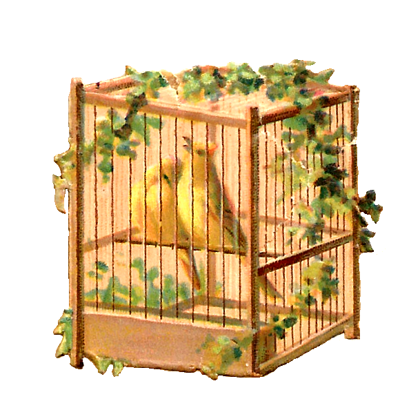 Cage clipart animal cage. Antique images free bird
