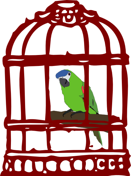 Cage clipart bird cage. Parrot in a clip