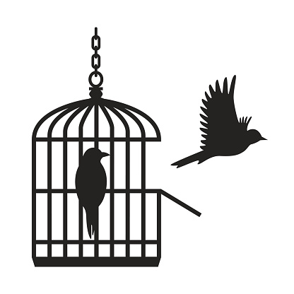 Cage clipart bird cage. Free empty birdcage cliparts