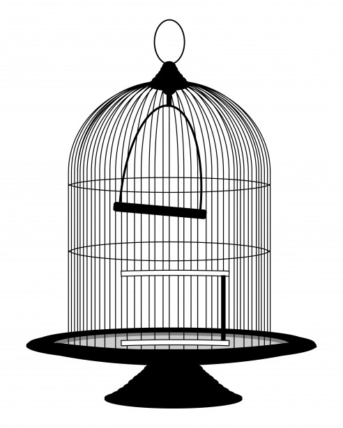 Cage clipart black and white. Pencil in color